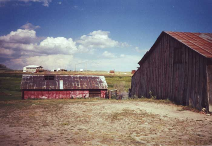 Allis Ranch Barns